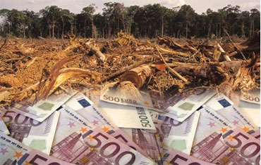 EUROPE: TREES NOT TRICKS!